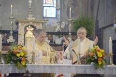 2017_mag_14_PONTECURONE_FOTO_Messa_ in onore di San Luigi Orion_presieduta da don Oreste Ferrari_mdg