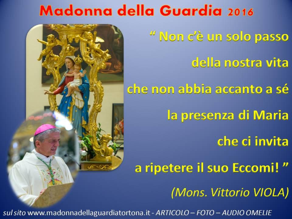 Messaggio_Mdg 2016_Viola