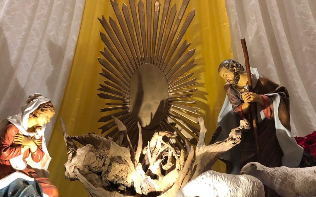Tortona (Santuario): Ottavo giorno Novena di Natale – RIFLESSIONE Don MORABITO