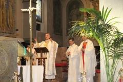 2016_ott_4_VOGHERA_san francesco_FOTO_diocesi